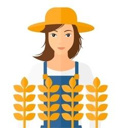 Man in wheat field vector
