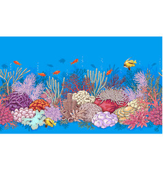 coral reef and fishes pattern vector image vector image