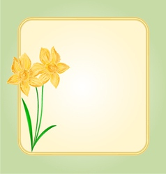 Daffodil spring flower background frame vector