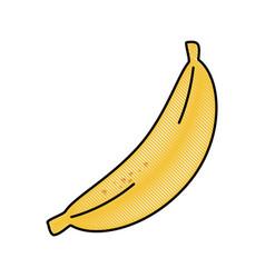 Banana fruit food vector