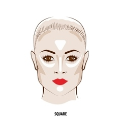 Contour and Highlight makeup vector image vector image