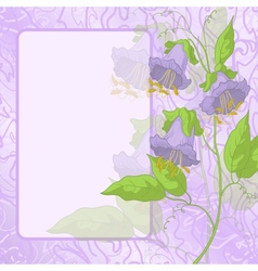 Flowers frame and curves vector image vector image