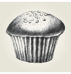 Sketch of a chocolate chips cupcake vector