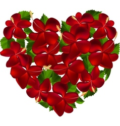 Heart made of hibiscus flowers vector image vector image