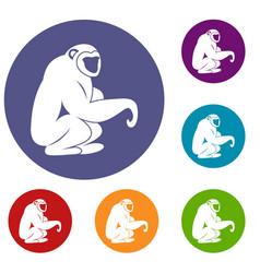 Monkey sitting icons set vector