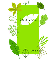 Natural card with stylized green leaves spring or vector