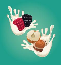Oatmeal healthy food vector