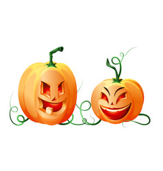 ripe smiling pumpkins isolated on white vector image