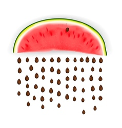 Slice of nice fresh watermelon vector