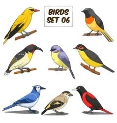 Bird set cartoon colorful vector image