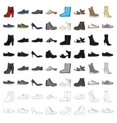 shoes style heel and other types of shoes vector image