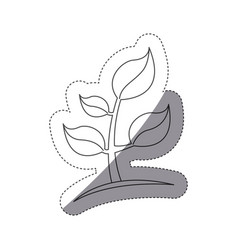 figure plants with leaves icon image vector image vector image