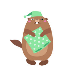 groundhog holding a pillow flat t vector image