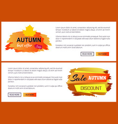 Only today autumn sale -35 advert promo poster vector