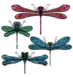 Set of four hand drawn colorful dragonflies vector image
