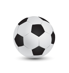 soccer ball and football vector image