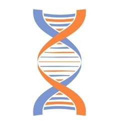 New dna and molecule icon vector