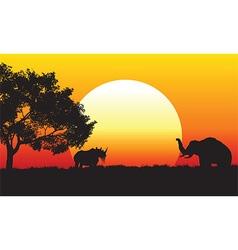 African safari scene at sunset vector image