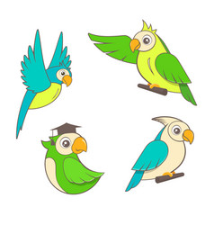 cute cartoon parrots set on a white background vector image vector image