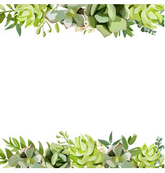 floral design square card design with succulent vector image vector image