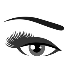 grey eye with eyelashes vector image vector image