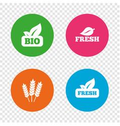 Natural fresh bio food icons vector