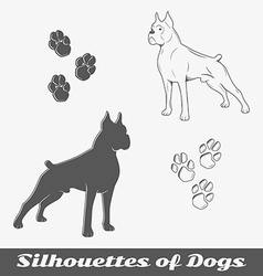 Silhouettes of purebred dogs vector
