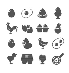 Egg icons vector