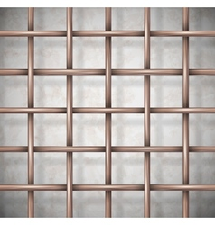 Background the cage vector image vector image