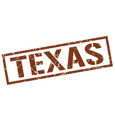 Texas brown square stamp vector