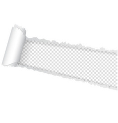 seamless ripped of paper on a transparent vector image