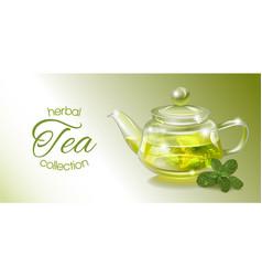 Herbal tea banner vector