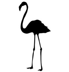 Silhouette of flamingo vector
