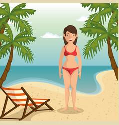 beach vacation design vector image