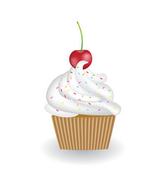 cupcake with cherry on white background vector image