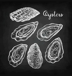 Oysters chalk sketch vector