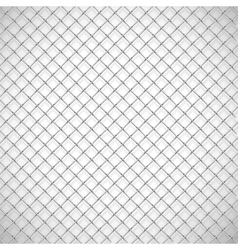 Texture the cage vector image