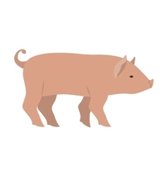 Pork livestock animal design vector