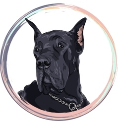 Sketch domestic dog black great dane breed vector