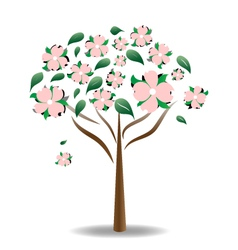 Carolina Dogwood vector image
