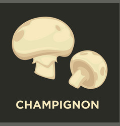 Champignon edible mushroom isolated flat vector