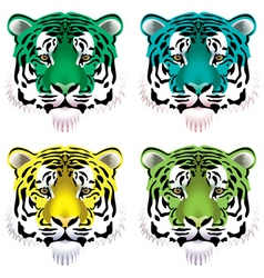 Tiger heads vector
