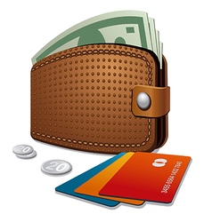 Wallet and credit cards vector