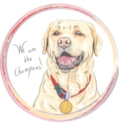 dog breed Labrador Retriever champion vector image