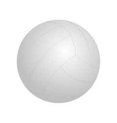 Ball for playing volleyball vector