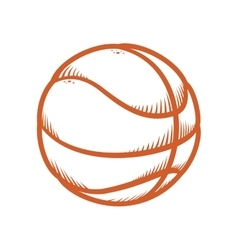 Ball icon Basketball design graphic vector image vector image