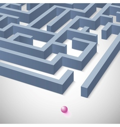 Maze concept for your business presentation vector image vector image