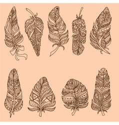 Hand drawn doodle feather set vector