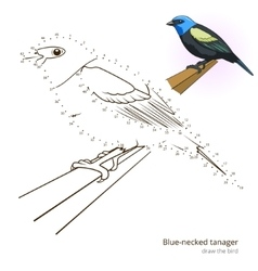 Blue necked tanager bird learn to draw vector image