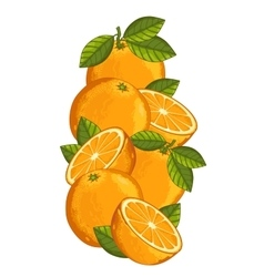 Orange isolated composition vector image vector image